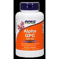 Alpha GPC 300 mg - L-Alfa-Glicerylofosforylocholina (60 kaps.) NOW Foods