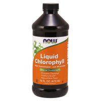 Chlorophyll - Chlorofil w płynie (473 ml) NOW Foods