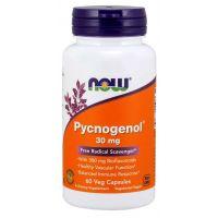 Pycnogenol - Ekstrakt z kory francuskiej Sosny Morskiej 30 mg (60 kaps.) NOW Foods