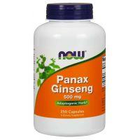 Panax Ginseng - Żeń-szeń 500 mg (250 kaps.) NOW Foods