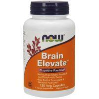 Brain Elevate (120 kaps.) NOW Foods