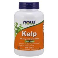 Kelp (naturalny Jod) - Morszczyn Pęcherzykowaty (200 tabl.) NOW Foods