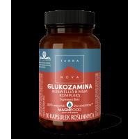 Glukozamina, Boswellia i MSM Kompleks (50 kaps.) Terranova