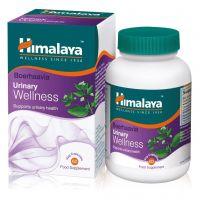 Boerhaavia Urinary Wellness - Wsparcie dla układu moczowego (60 kaps.) Himalaya
