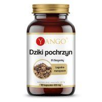 Dziki Pochrzyn 340 mg (90 kaps.) Yango