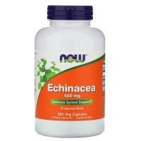 Echinacea - Jeżówka Purpurowa (250 kaps.) NOW Foods