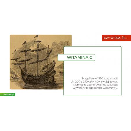 Witamina C-1000 (100 kaps.) Now Foods