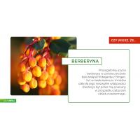 Berberyna 500 mg (300 kaps.) Maypro