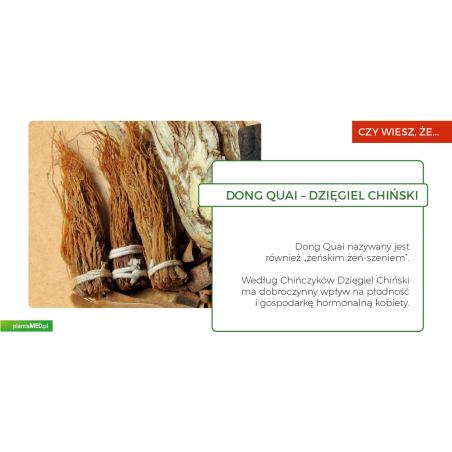 Organic Dong Quai Root (60 kaps.) Viridian