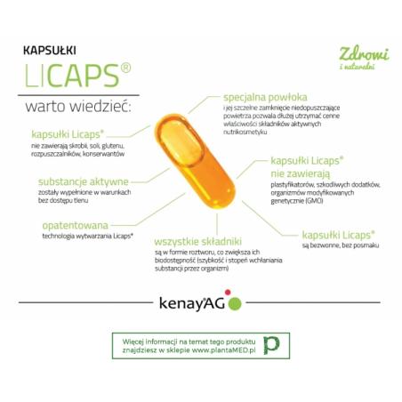 Kurkuma micelizowana 800 mg (240 kaps.) Lonza