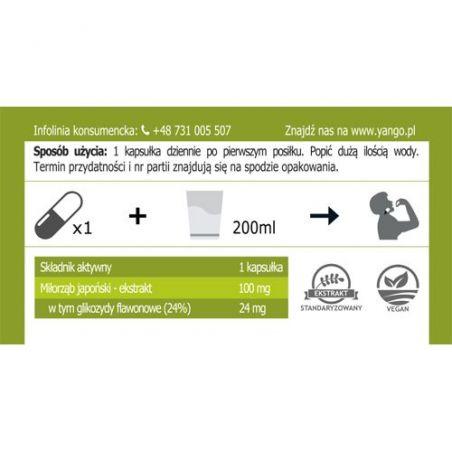 Ginkgo Biloba - ekstrakt 24% glikozydów flawonowych 310 mg (90 kaps.) Yango